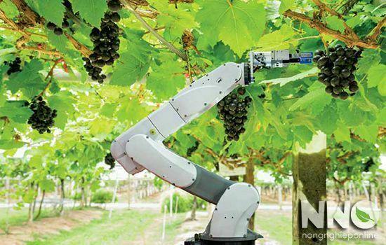 Một số ứng dụng công nghệ cao trong mô hình nông nghiệp 4.0