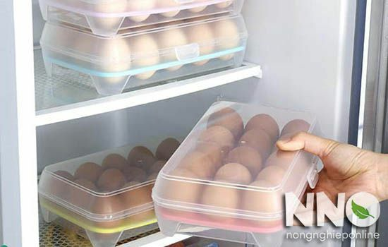 Cách bảo quản trứng gà để ấp