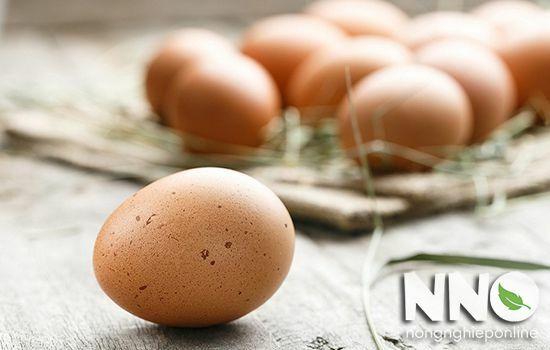 Trứng gà công nghiệp ăn chay được không?
