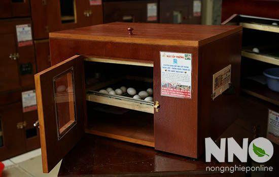 Máy ấp trứng Phi Lộc