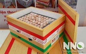 Máy ấp trứng Tuyên Quang