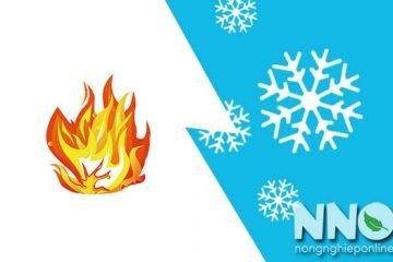 Phân biệt sấy nóng và sấy lạnh, những điểm giống và khác nhau