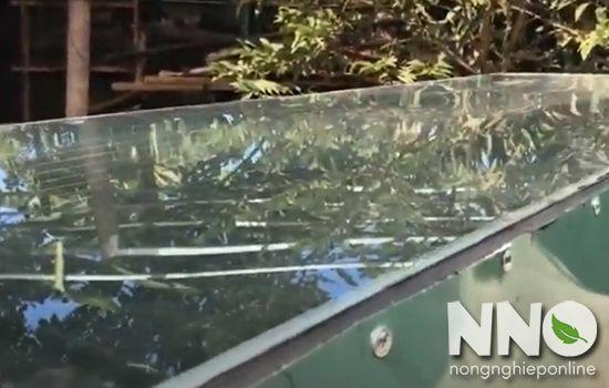 Cách làm máy sấy nông sản bằng NLMT