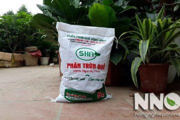Cách bón phân trùn quế cho hiệu quả với từng loại cây trồng