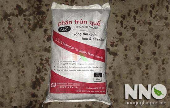 Cách bón phân trùn quế hiệu quả