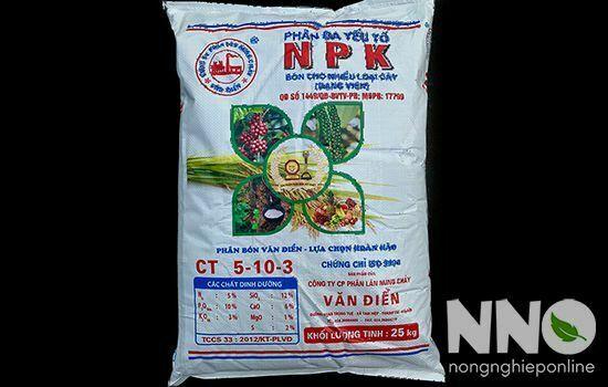 Cách trồng rau dền bằng hạt
