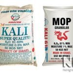 Tác dụng của phân Kali đối với các loại cây trồng