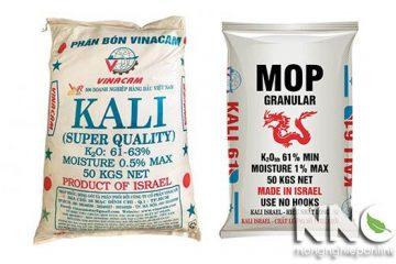Tác dụng của phân Kali và tác dụng của Kali với cây trồng