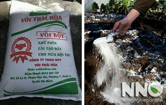 Cách bổ sung canxi cho cây trồng - bón vôi