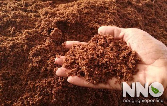 Xơ dừa làm giá thể trồng