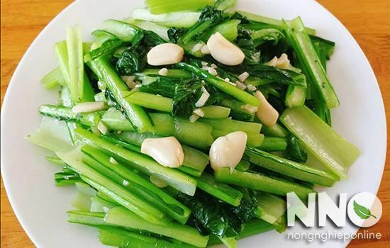 Tác dụng của rau cải ngọt đối với sức khỏe, tốt đến không ngờ
