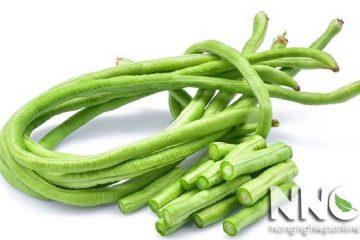 Tác hại của đậu đũa, gây ngộ độc nếu ăn sống, kỵ với gout