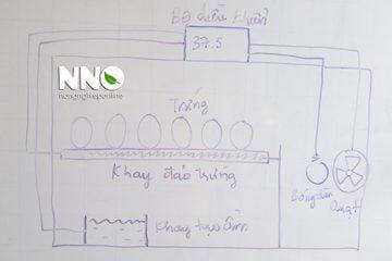 Sơ đồ mạch điện máy ấp trứng và nguyên lý hoạt động cơ bản