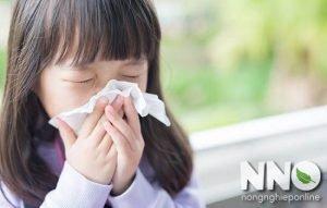 Trẻ bị ho sốt có ăn trứng gà được không
