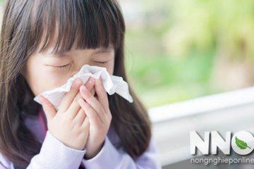 Trẻ bị ho sốt có ăn được trứng gà không? Giải đáp từ NNO