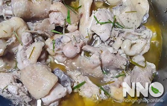 Viêm họng ăn thịt gà được không